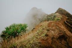 沿山土坎的有薄雾的足迹主角 在雾和陡坡掩藏的道路 圣安唐岛佛得角 图库摄影