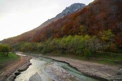 沿山河的秋天 库存图片