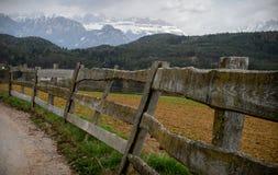 沿山路的篱芭 免版税库存照片