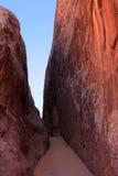 沿峡谷含沙恶魔的庭院s 免版税库存图片