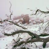 沿恶魔` s庭院足迹的反向雾,拱门国家公园,犹他 免版税库存照片