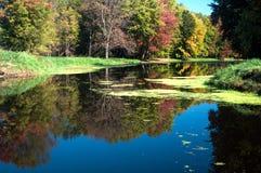 沿斯内克河的秋天 免版税库存照片