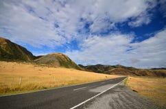 沿新西兰海岸的路 免版税库存照片