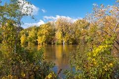 沿明尼苏达河的秋天叶子 库存图片