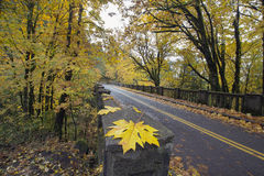 沿有历史的哥伦比亚高速公路桥梁的秋天 免版税库存照片