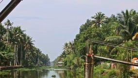 沿有水植物的河行动在吊桥下在热带 影视素材