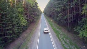 沿柏油路的白色自动驱动在巨大的森林阴影 影视素材