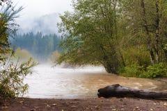 沿桑迪河的秋天雨 免版税图库摄影