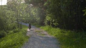 沿森林的摩托车骑士乘驾 股票视频
