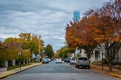 沿汗森街的秋天颜色,在伊斯顿,马里兰 库存照片