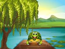 沿池塘的一只微笑的乌龟 库存图片