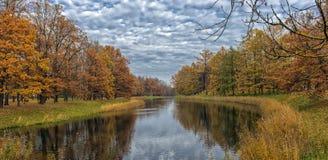 沿河和反射的秋天树 库存图片