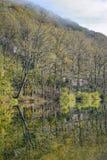 沿河的晴朗的秋天天 免版税图库摄影