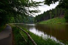 沿河的森林道路 免版税库存照片