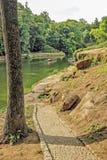 沿河的石道路 免版税图库摄影
