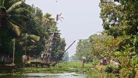 沿河的行动有举的吊桥的植物的在热带 股票视频