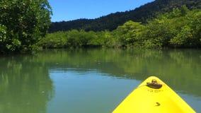 沿河走在密林,划皮船 影视素材
