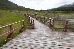 沿沿海足迹的Lapataia海湾在火地群岛国家公园,阿根廷 库存照片