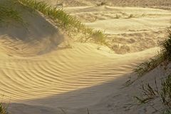 沿波罗的海的有风利耶帕亚沙丘 库存照片