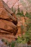 沿泰勒小河足迹中间叉子, Kolob,锡安国家公园,犹他的手指峡谷 图库摄影