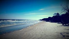 沿海地带 库存图片