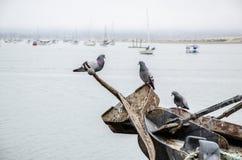 沿海场面在莫罗贝 免版税库存图片