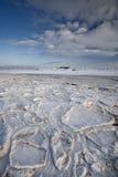 沿海场面雪 免版税库存图片