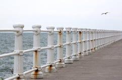 沿海岸区 免版税库存图片