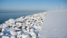 沿海岸荷兰语不尽的雪贞女 免版税库存图片
