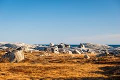 沿海新斯科舍独特的风景  免版税库存照片