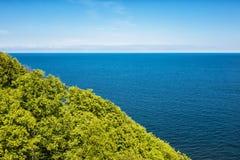 沿海森林 库存图片