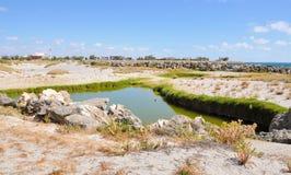 沿海沙丘的凉水池 免版税库存图片