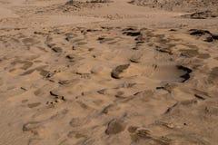沿海沙丘的细节,摩洛哥 免版税库存图片