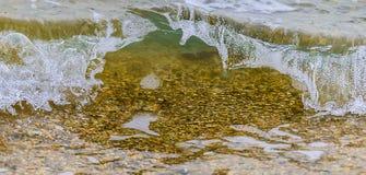 沿海波浪用干净的透明水 关闭 免版税库存照片