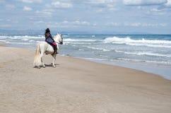 沿海滩的年轻女人骑马与他的白马,在背景中看见城市 免版税库存图片