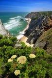 沿海的峭壁 免版税库存图片