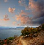 沿海的秋天足迹 免版税图库摄影