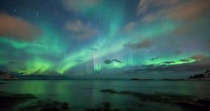 沿海被反射的极光borealis在挪威