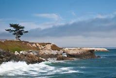 沿海视图 库存图片