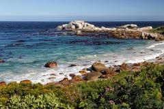 沿海风景在南非 库存图片