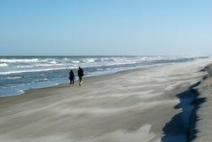 沿海滩人走 免版税图库摄影