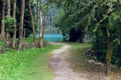 沿湖的风景道路在夏天 beauvoir 免版税库存照片