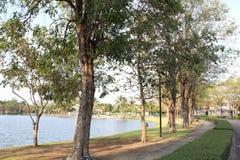 沿湖银行的道路  库存图片
