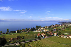沿湖,瑞士的城市 免版税库存照片
