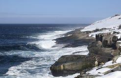 沿父亲特洛伊` s足迹的冬天海景在Flatrock附近的纽芬兰加拿大, 库存图片