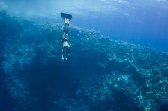 沿珊瑚freediver移动礁石在水面下 图库摄影