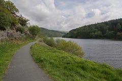 沿着一个树木繁茂的湖的道路 免版税图库摄影