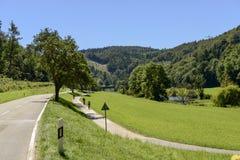 沿着Donau河的路和自行车道路在Thiergarten, Germa附近 免版税库存照片
