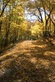 沿秋天米尼亚波尼斯密西西比河 库存图片
