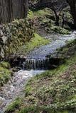 沿篱芭的小小河在Sibiel罗马尼亚 免版税库存图片